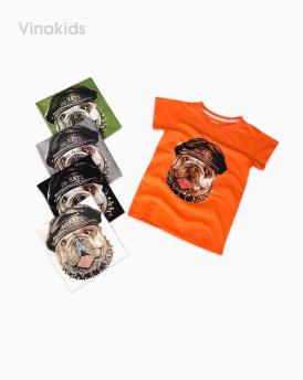 Áo bé trai cotton cún nẹp cổ màu cam