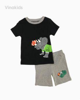 Đồ bộ bé trai borip tím than (2-6 tuổi)